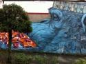 Le Singe Street Art d'Annemasse